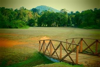 De 6 aantrekkingskrachten van Suriname