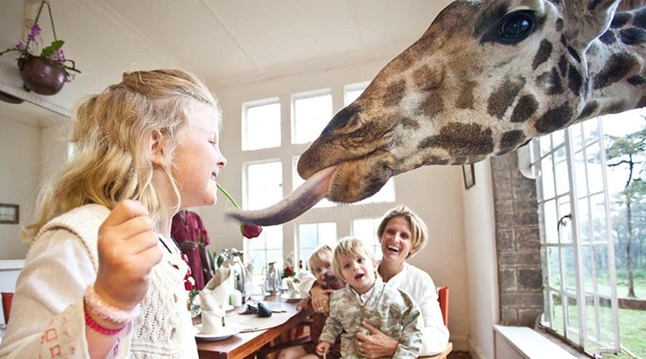 Giraffe Manor in Nairobi in Kenia
