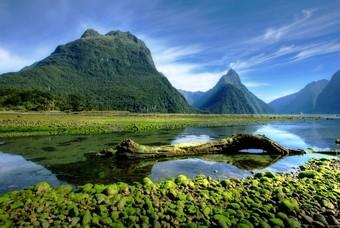 Landschap Zuidereiland