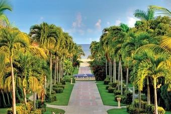Veel nieuw aanbod Caribbean bij TUI