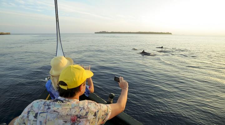 Bij dit resort is het mogelijk om dolfijnen te gaan spotten.