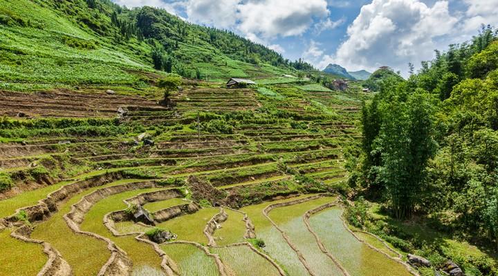 Het landschap van Vietnam