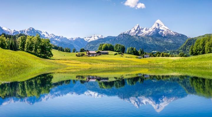 Het Beierse Woud