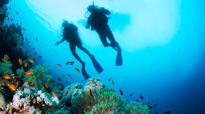 Duiken op de Seychellen