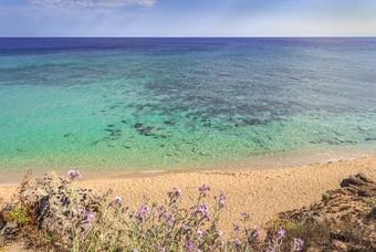 Een van de stranden bij de Campomarino duinen