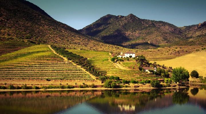 Douro vallei vanaf de Douro rivier