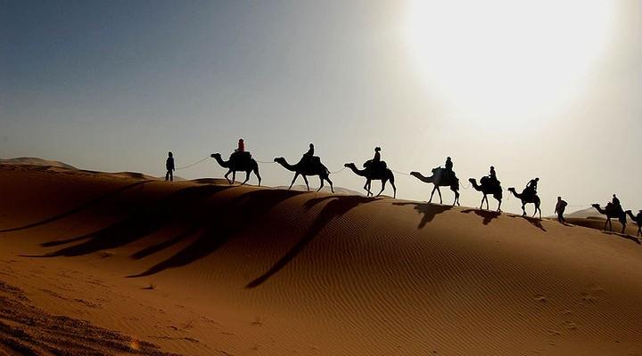 Een kamelentocht in de Sahara