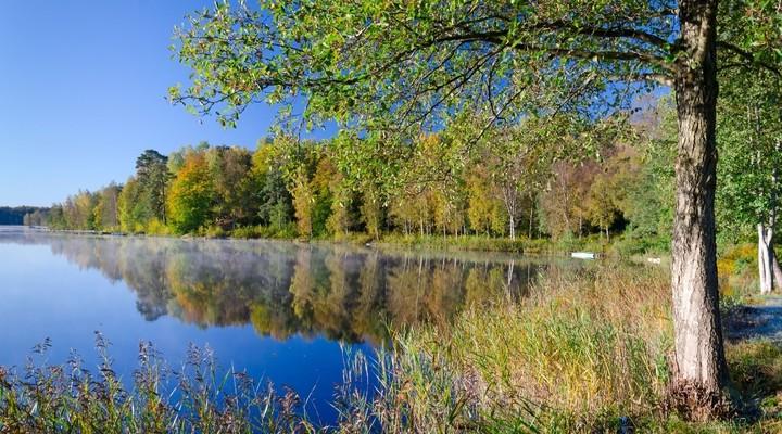 Mooi Zweeds herfstlandschap