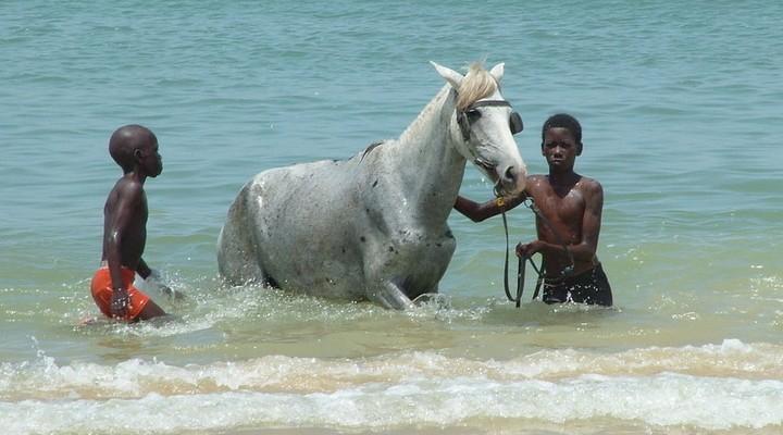 Jonge Senegalezen in het water