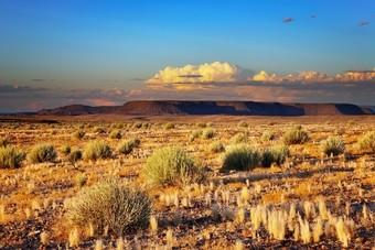 Nieuw: familierondreis door Namibië bij Sawadee