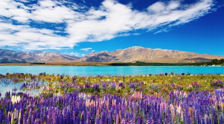 Mooie natuur in Nieuw-Zeeland