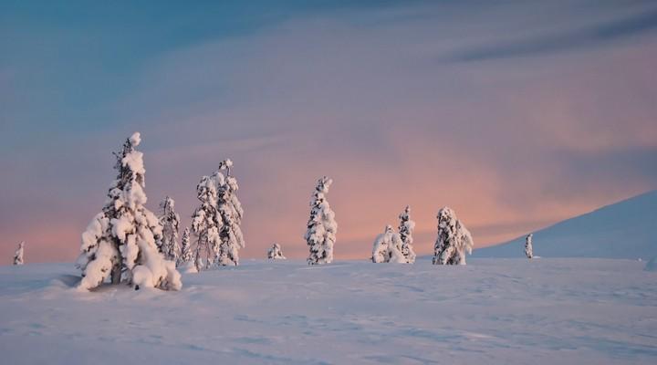 Winterse aanblik van Lapland, landschap Finland