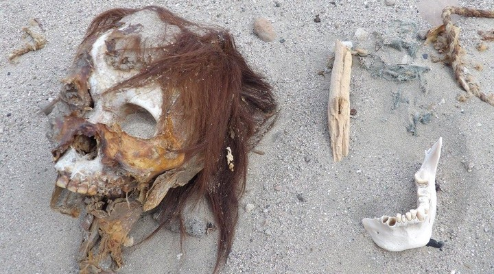 Skelet in de woestijn van Nazca