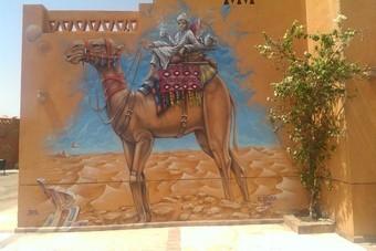 Met dolfijnen zwemmen en op jeepsafari in Egypte