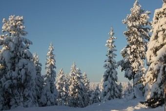 Lang weekend Fins Lapland