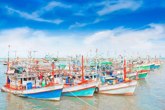 Het noorden van Thailand