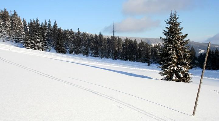 Nationaal Park Krkonose, Tsjechië