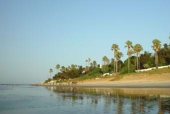 Reisverslag Gambia en Senegal