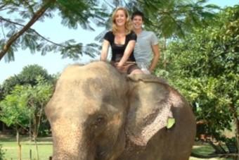 Oad stopt met olifantenritjes