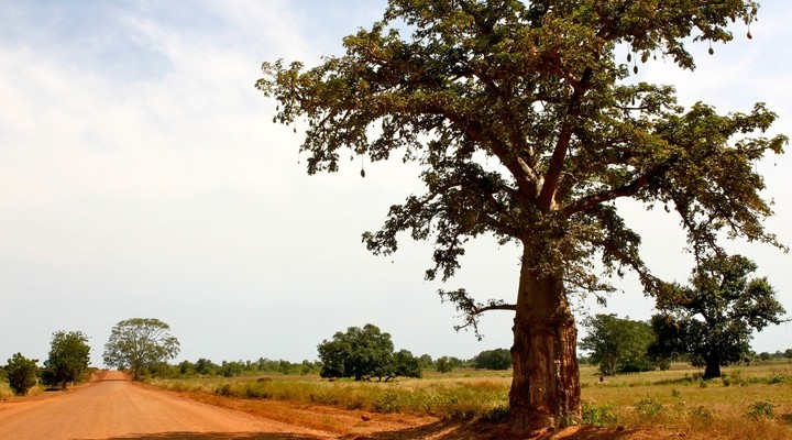 Verlaten weg in Gambia
