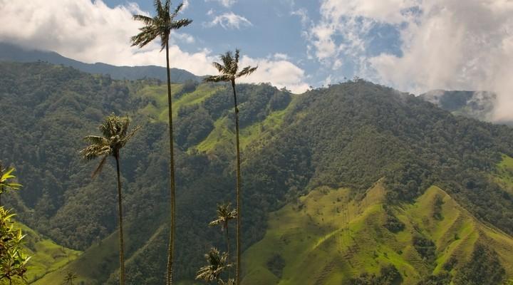 Prachtige natuur in Colombia