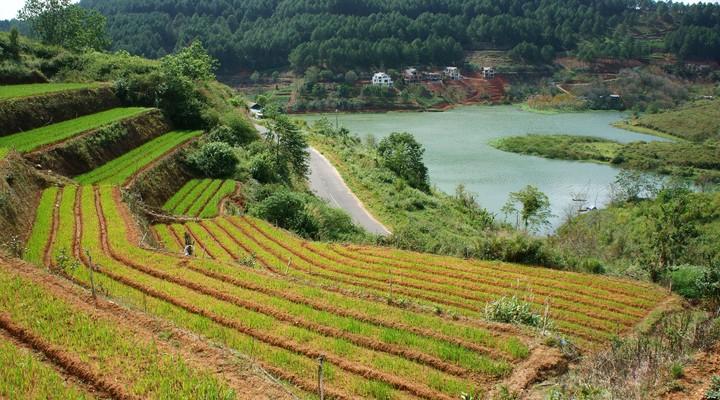 Landschap Dalat, Vietnam