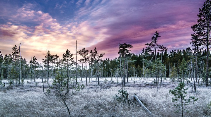 Prachtig landschap Midden Zweden