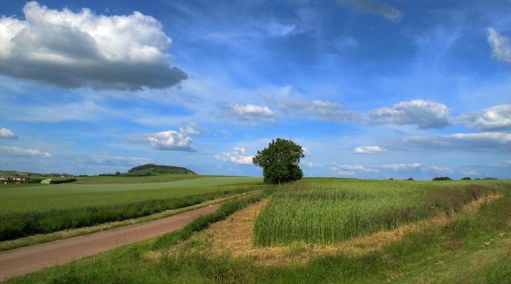Landschap Bourgogne Frankrijk