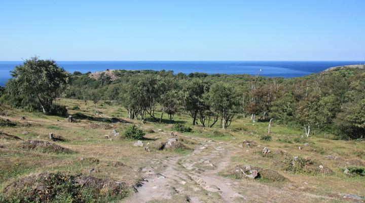 Wandelen op de Kullaberg