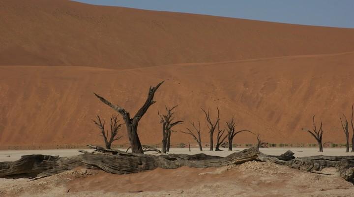 Sossusvlei, Death Vlei, Namibië
