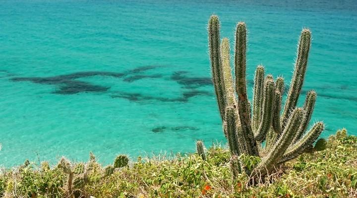 Heldere water van eilandengroep Los Frailes