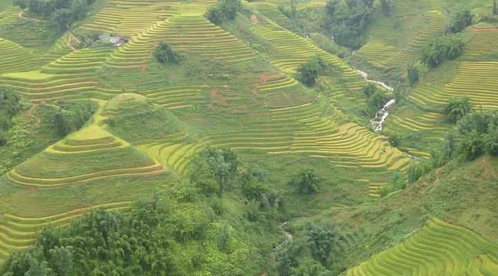 Het landschap van Sapa in Vietnam
