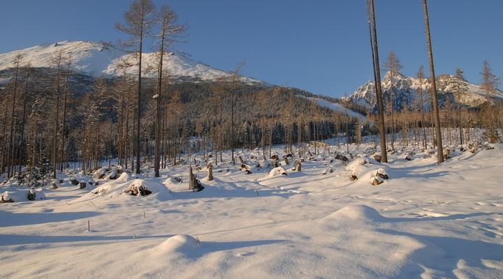 Winters landschap Slowakije