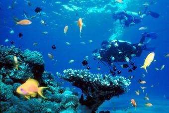 TUI breidt het aanbod op Bonaire verder uit