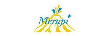 Logo van Merapi.nl