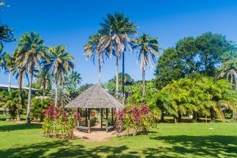 Rondreis door Suriname en Guyana bij Djoser