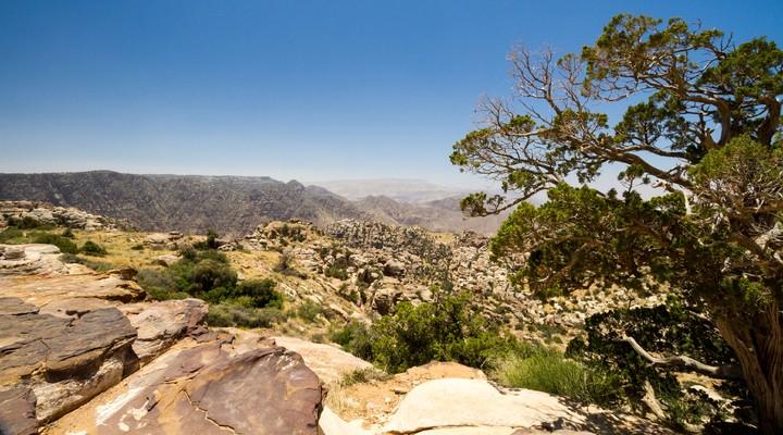 Natuurreservaat bij Dana