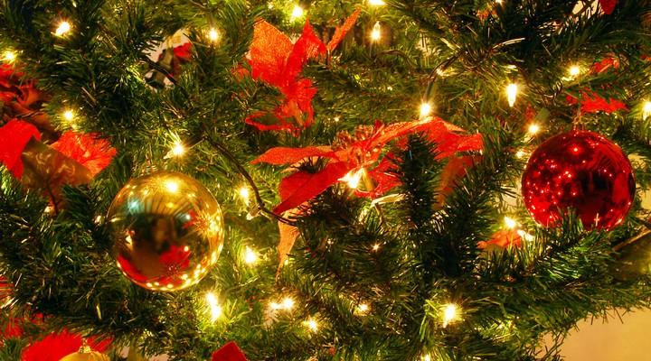 Kerstbomen worden versierd