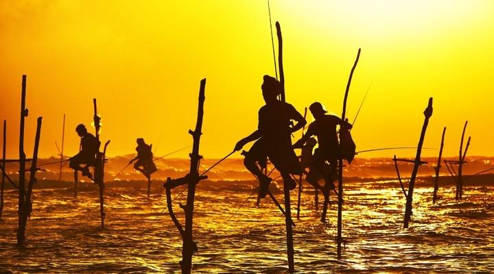 Vissers Sri Lanka