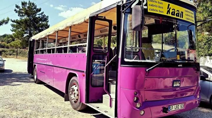 De grote paarse bus
