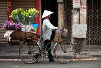 Het vieren van Vietnam