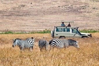 Een zebra-safari in Kenia