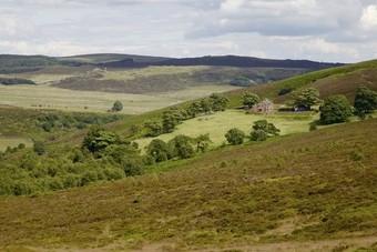 Landal opent vierde park in Engeland