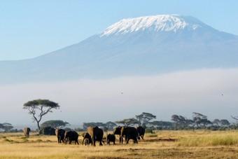 Beklim met Djoser de Kilimanjaro