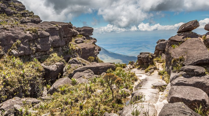Nationaal Park Canaima