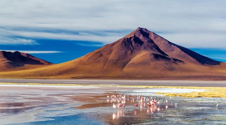 Laguna Colorada Uyuni, Bolivia
