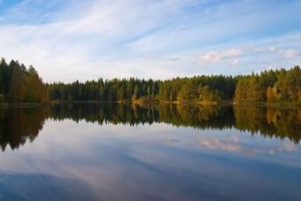 Meertje omringd door bossen in Finland