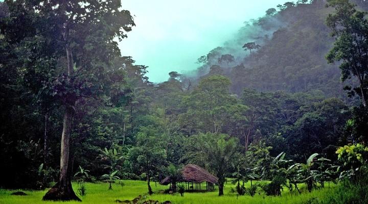 De natuur in Togo