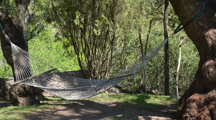 Hangmat in natuur Paraguay