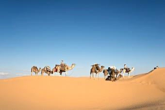 TUI biedt weer reizen aan naar Tunesië